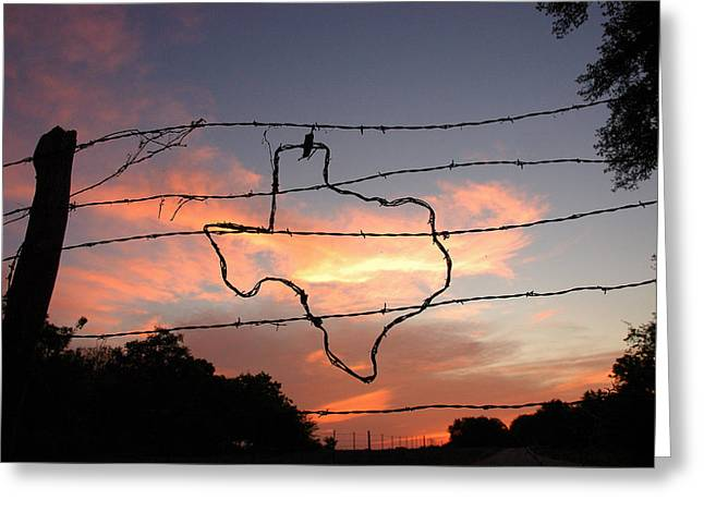 Barbs Greeting Cards - Texas Sunset Greeting Card by Robert Anschutz