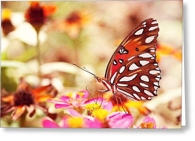 Vibrant Photographs Greeting Cards - Textured Butterfly Greeting Card by Joel Olives