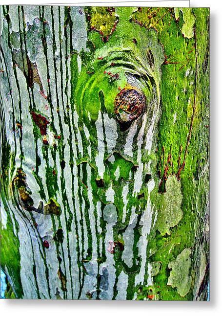 Stigma Greeting Cards - Textures. The Crying Tree Greeting Card by Andy Za