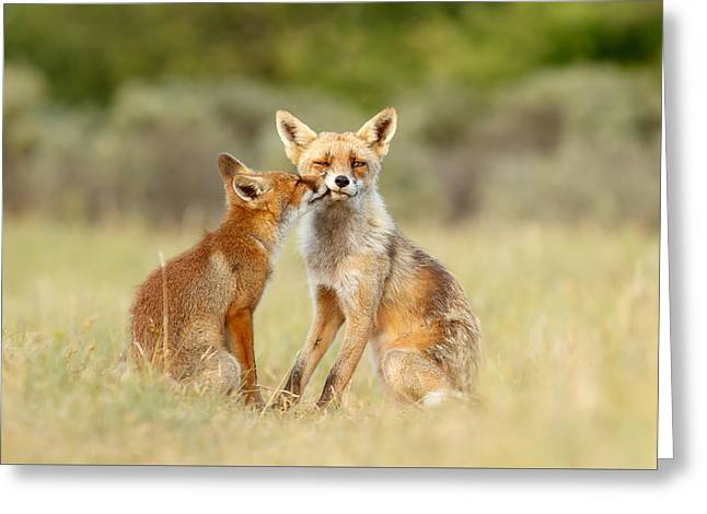 Thank God It's Friday - Fox Love Greeting Card by Roeselien Raimond