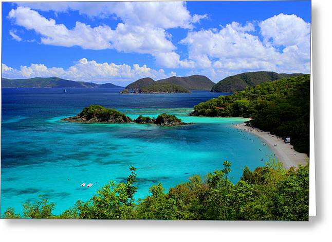 Greeting Cards - Thank You St. John USVI Greeting Card by Fiona Kennard