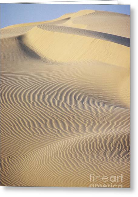 Sand Patterns Greeting Cards - Thar Desert Dunes Greeting Card by Gloria & Richard Maschmeyer - Printscapes