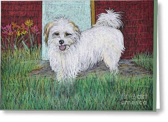 Small Dog Pastels Greeting Cards - That Little White Dog Greeting Card by Reb Frost