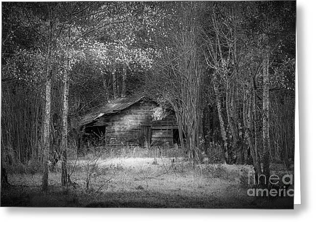 Country Shed Greeting Cards - That Old Barn-bw Greeting Card by Marvin Spates
