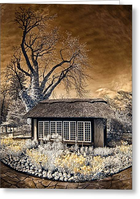 Thatch Greeting Cards - Thatched Cottage Greeting Card by Steve Zimic