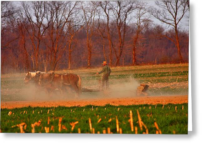 The Amish Way Greeting Card by Scott Mahon