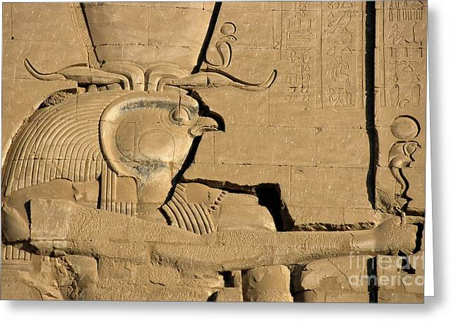 The ancient Egyptian god Horus sculpted on the wall of the First Pylon at the Temple of Edfu Greeting Card by Sami Sarkis