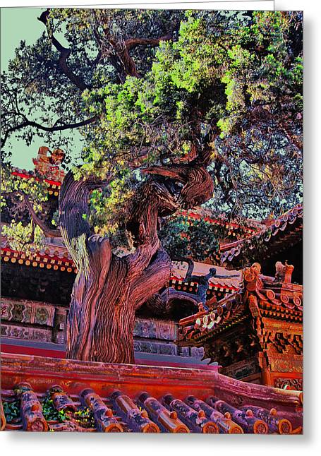 Greek Sculpture Greeting Cards - The Ancient Tree. Next To The Secret City.  Greeting Card by Andy Za
