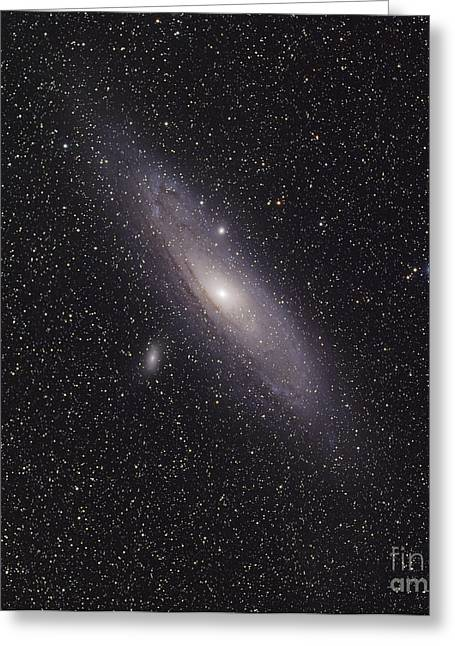 Constellations Greeting Cards - The Andromeda Galaxy Greeting Card by Phillip Jones
