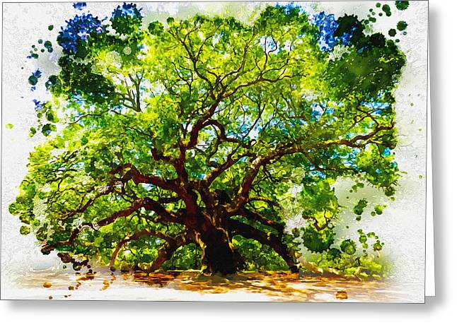 Tress Framed Prints Greeting Cards - The Angel Oak Tree Greeting Card by Don Kuing