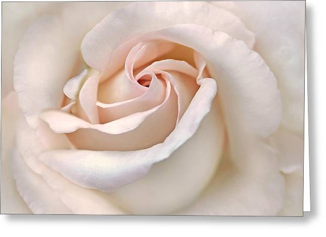 Square Format Greeting Cards - The Angels Rose Flower Greeting Card by Jennie Marie Schell