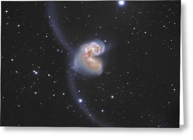 Starforming Greeting Cards - The Antennae Galaxies Greeting Card by Robert Gendler