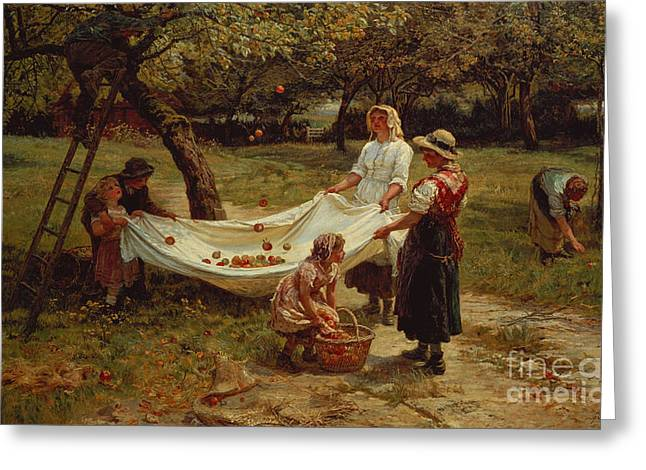 Apple Orchards Greeting Cards - The Apple Gatherers Greeting Card by Frederick Morgan