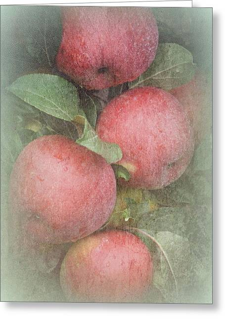 Healthy Greeting Cards - The Apple Cluster Greeting Card by Toni Abdnour