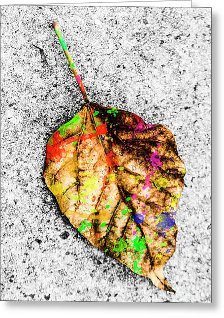 The Art Of Nature Greeting Card by Jorgo Photography - Wall Art Gallery