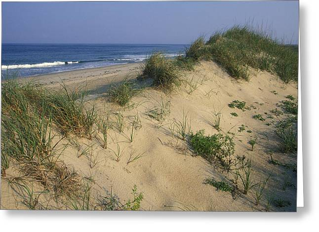 Sea Oats Greeting Cards - The Atlantic Ocean Rolls Greeting Card by Stephen Alvarez