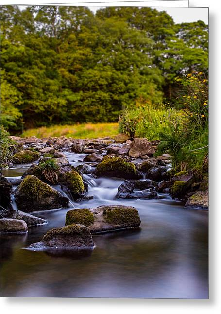 Moss Greeting Cards - The babbling brook Greeting Card by Joel Jones