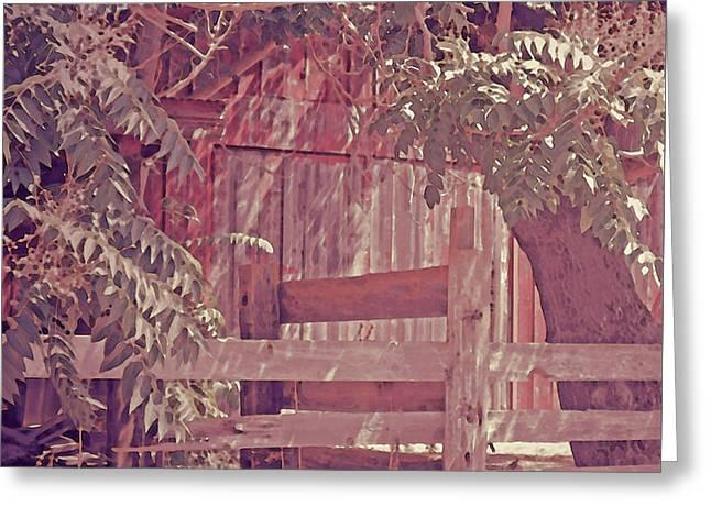 Barn Door Greeting Cards - The Barn Door Greeting Card by Kathy Franklin
