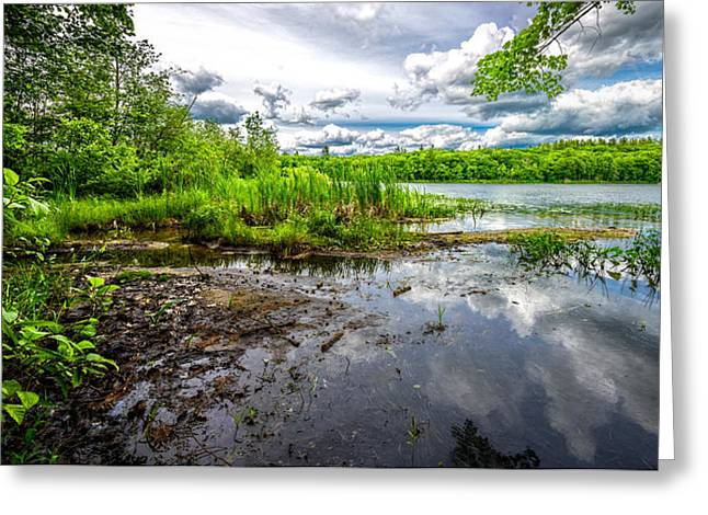 Maine Spring Greeting Cards - The Basin Greeting Card by Bob Orsillo