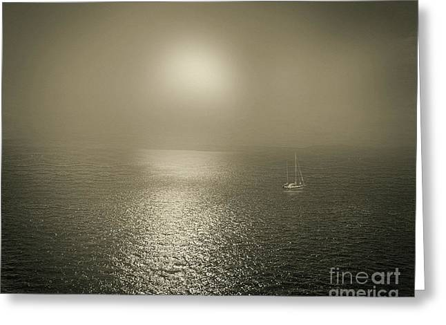 Against The Sunlight Greeting Cards - The Bay Greeting Card by Edmund Nagele