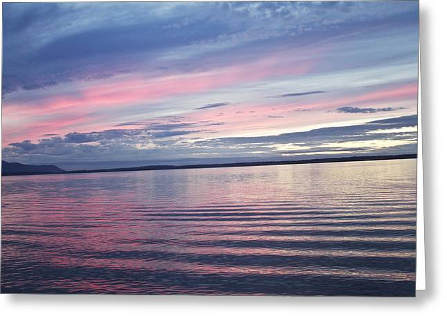 Peaceful Scene Greeting Cards - The Bay Greeting Card by Elvira Butler
