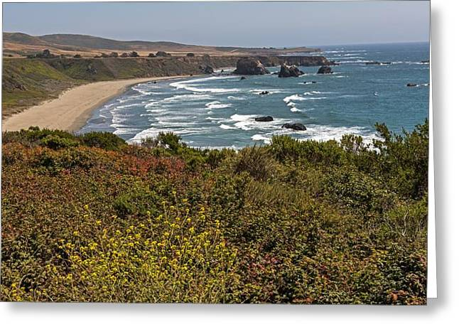 Big Sur Greeting Cards - The Beautiful Pacific Coast Highway Greeting Card by Willie Harper