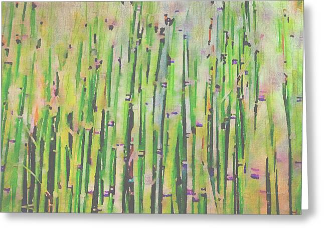 Bamboo Fence Greeting Cards - The Beauty of a Bamboo Fence Greeting Card by Angela A Stanton