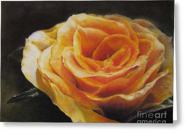 Beauty Pastels Greeting Cards - The Beauty of a Rose Greeting Card by Sabina Haas