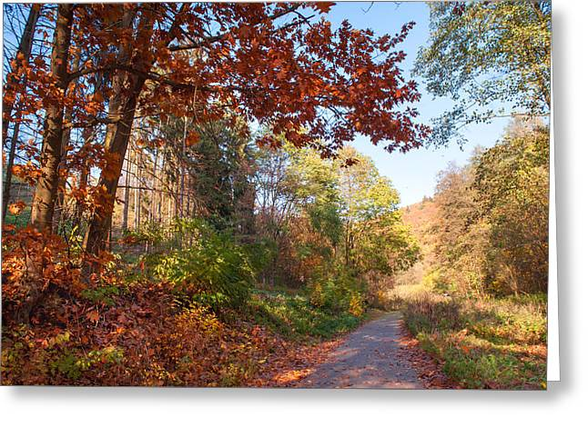 The Beauty Of Autumn Time Greeting Card by Jenny Rainbow