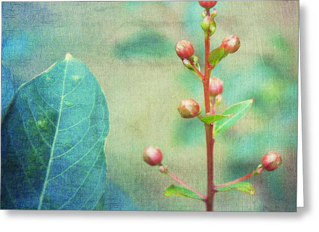 Botanical Greeting Cards - The Beauty Of Nature Greeting Card by Kathy Bucari