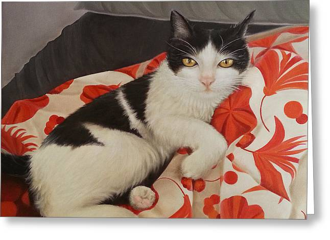 Kitten Prints Greeting Cards - The bed is mine Greeting Card by Kathleen Wong