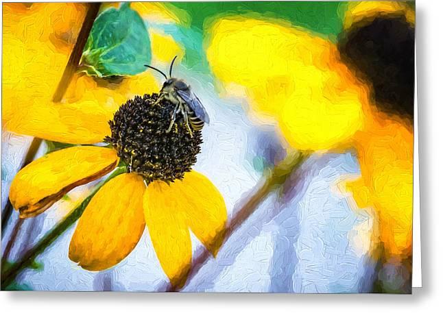Black Eyed Susan Print Greeting Cards - The Best Gardener - Impasto Greeting Card by Steve Harrington