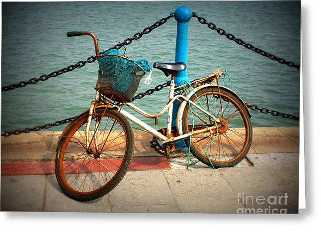 Old Fence Posts Digital Greeting Cards - The Bicycle Greeting Card by Carol Groenen