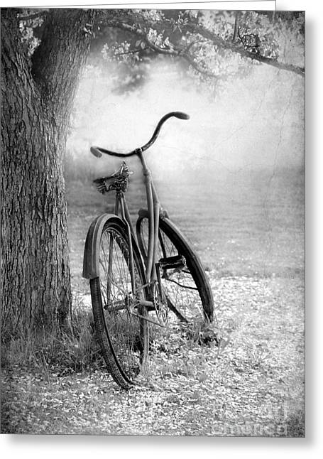 Foggy Landscapes Greeting Cards - The Bicycle Greeting Card by Sophie Vigneault