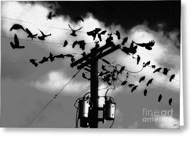 The Birds Greeting Card by David Lee Thompson