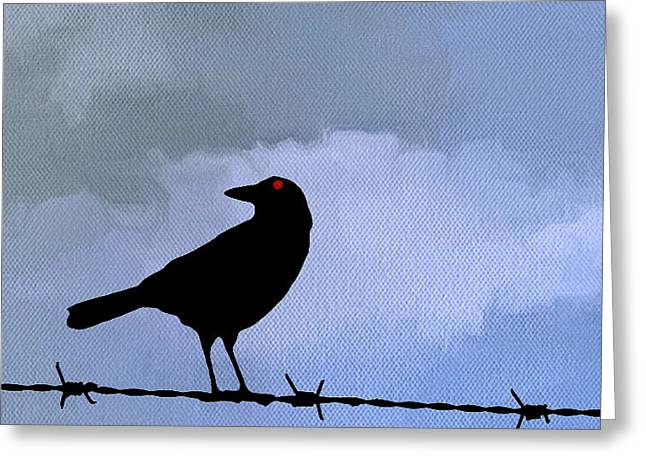 Barbed Wire Fences Greeting Cards - The Black Crow Knows Blue Greeting Card by Edward Fielding