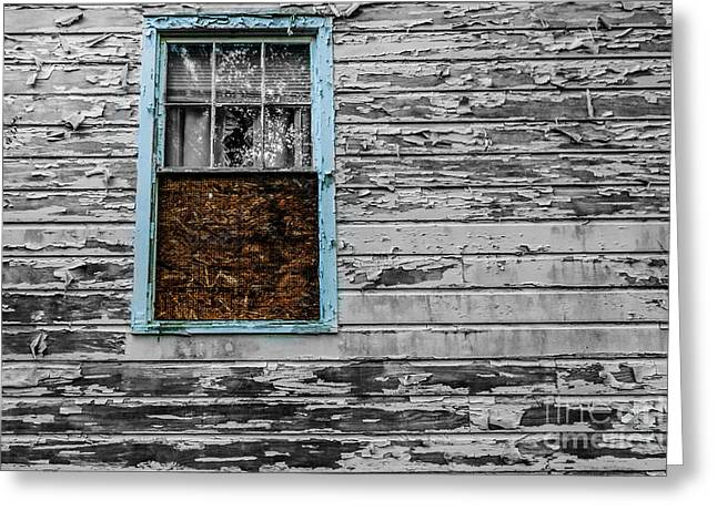 Abandoned Houses Tapestries - Textiles Greeting Cards - The Blue Window Greeting Card by James Hennis