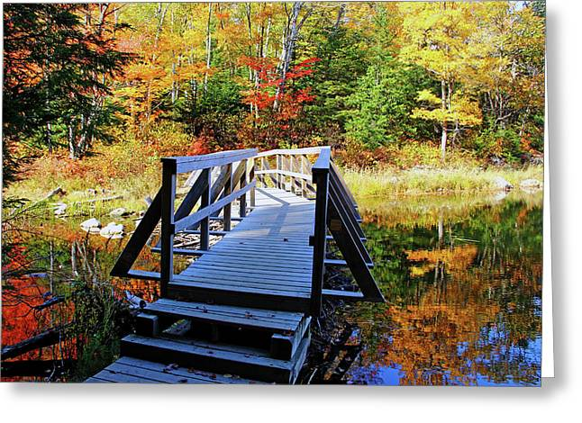 Wooden Stairs Greeting Cards - The Boardwalk Greeting Card by Debbie Oppermann