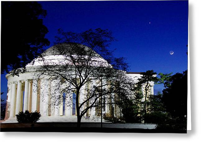 Jefferson Greeting Cards - The Bold Greeting Card by Mitch Cat