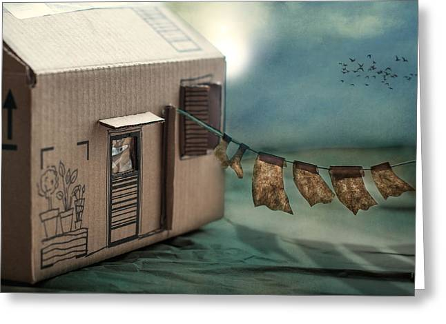 The Box That Was A House Greeting Card by Maggie Terlecki