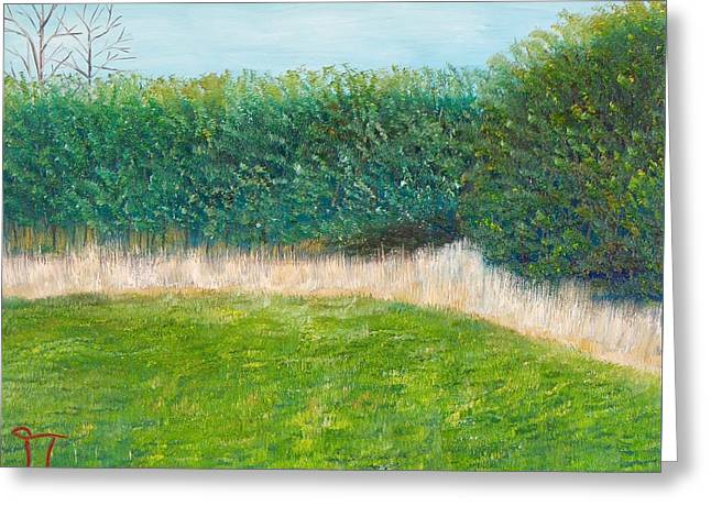 Horsemint Greeting Cards - The Boxelder Forest Greeting Card by Troy Thomas