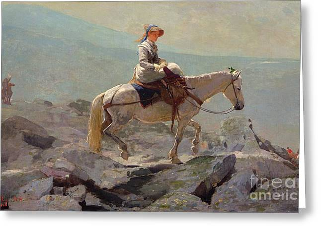 Mules Greeting Cards - The Bridal Path Greeting Card by Winslow Homer