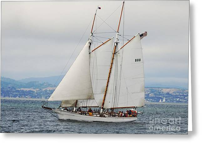 Best Sailing Photos Greeting Cards - The Brigadoon Greeting Card by Scott Cameron