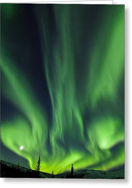 Ethereal White Trees Greeting Cards - The Bright Neon Green Aurora And Moon Greeting Card by Sunny Awazuhara- Reed