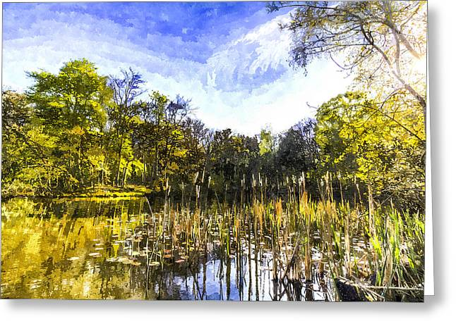 Bulrushes Greeting Cards - The Bulrush Pond Art Greeting Card by David Pyatt