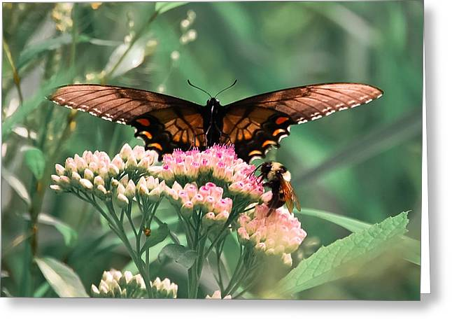 Indiana Flowers Digital Art Greeting Cards - The Butterfly and The Bumblebee Greeting Card by DigiArt Diaries by Vicky B Fuller
