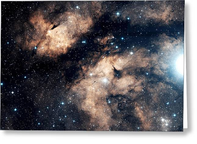 Interstellar Clouds Greeting Cards - The Butterfly Nebula Greeting Card by Charles Shahar