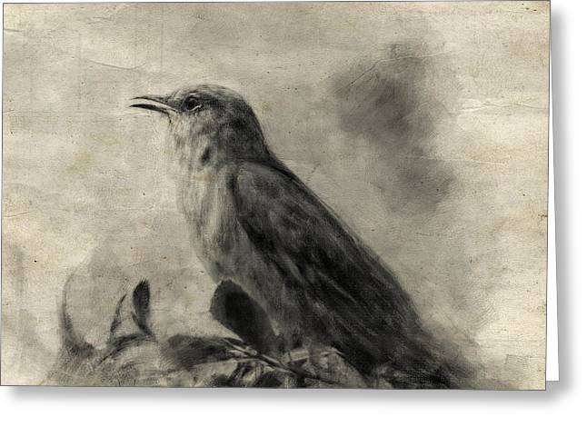 The Call Of The Mockingbird Greeting Card by Jai Johnson