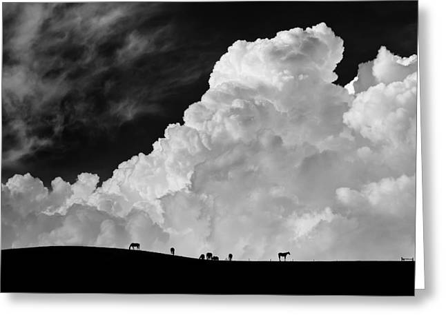 Storm Cloud Greeting Cards - The Calm Before The Storm Greeting Card by Gloria Salgado Gispert