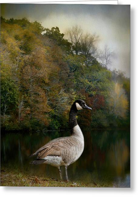 The Canadian Goose Greeting Card by Jai Johnson